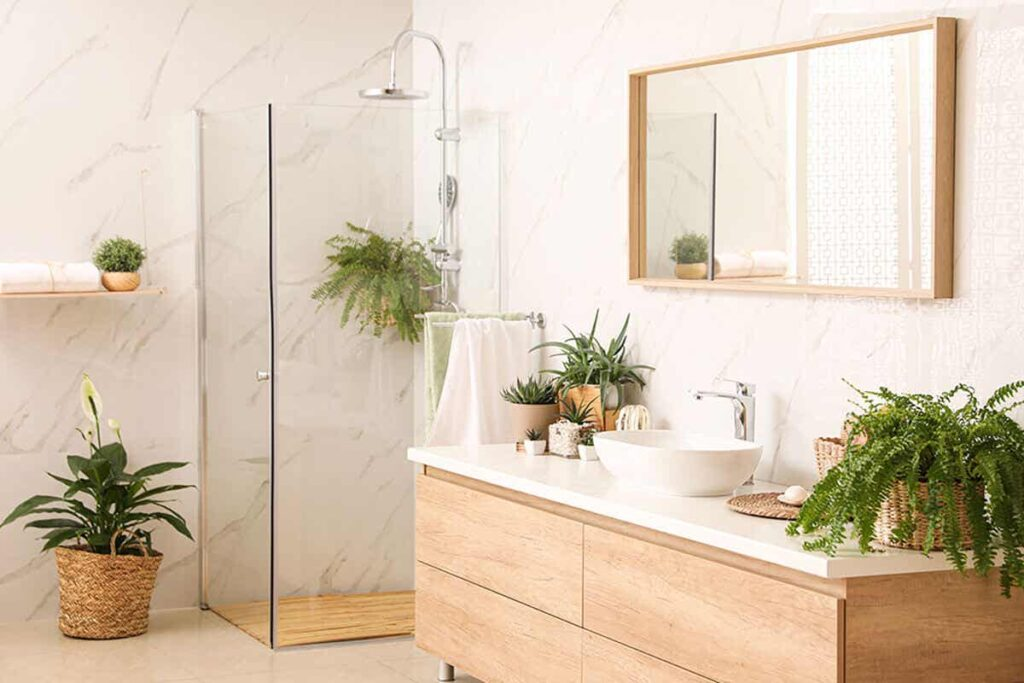 The best plants for the bathroom