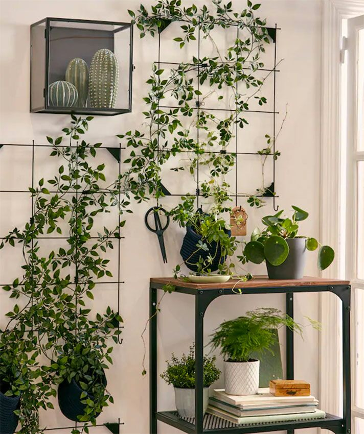 Metal wall stands for plants