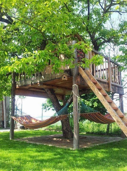 Build your own tree house