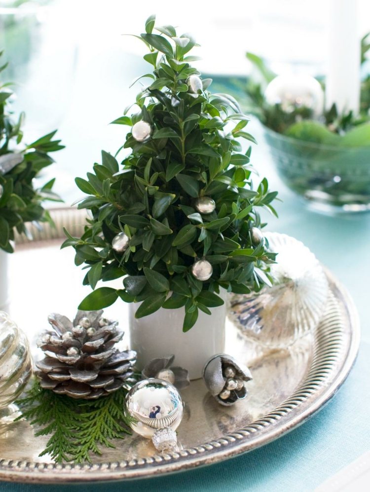 christmas-tree-miniature-special-images