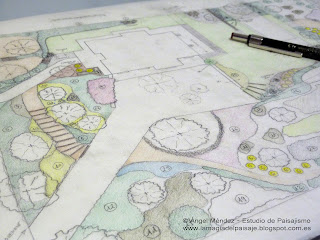 Hand drawing, garden drawing, learn landscaping, study landscape architecture